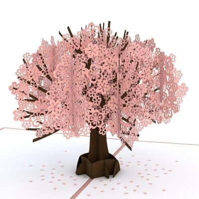 Lovepop Cherry Blossom Pop Up Card