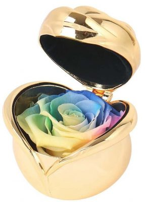 Angel Lover Preserved Flower Rose