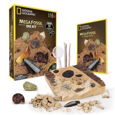 Mega Fossil Mine – Dig Up 15 Real Fossils