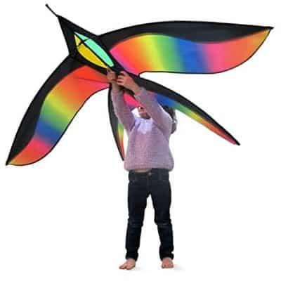 Stoie's Bird Kite