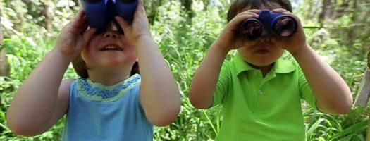 Best Binoculars for Kids 2020