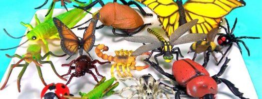 Best Bug Toys for Kids 2020