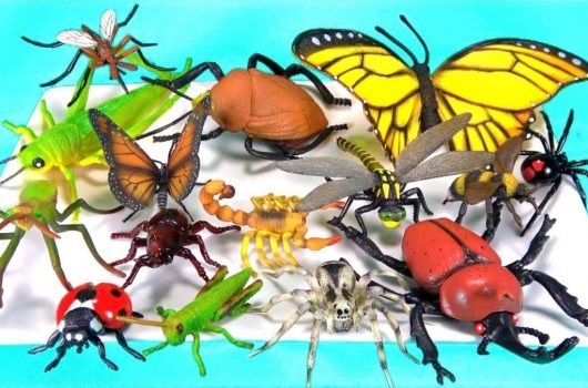 A Bug's Life: The Best Bug Toys for Kids