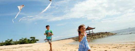 Best Kites for Kids 2021