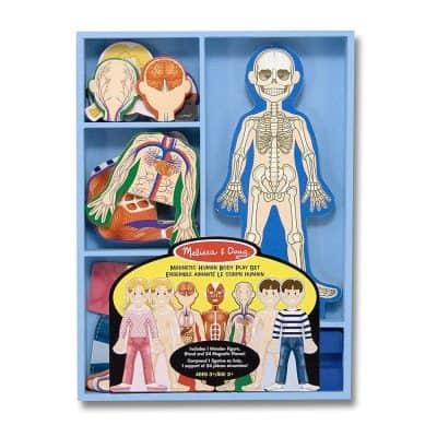 Melissa & Doug Magnetic Human Body Anatomy Playset