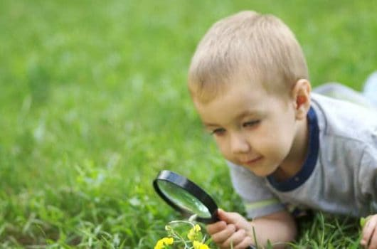 Best Magnifying Glasses for Kids to Look Closely At