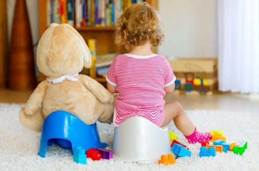 The 10 Best Potty Chairs and Seats to Buy 2020