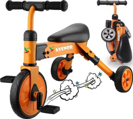 Avenor 2-in-1 Tricycle