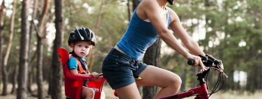 The 10 Best Baby Bike Seats to Buy in 2020