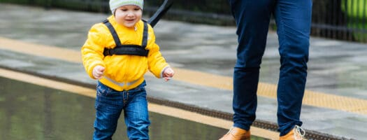 The 10 Best Child Leashes to Buy in 2020