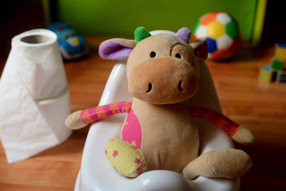 plush cow toy learning to use the potty