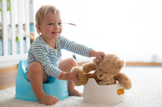 The Secrets of Successful Potty Training for Boys