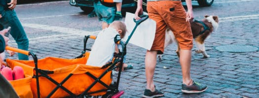 The 10 Best Stroller Wagons to Buy in 2020