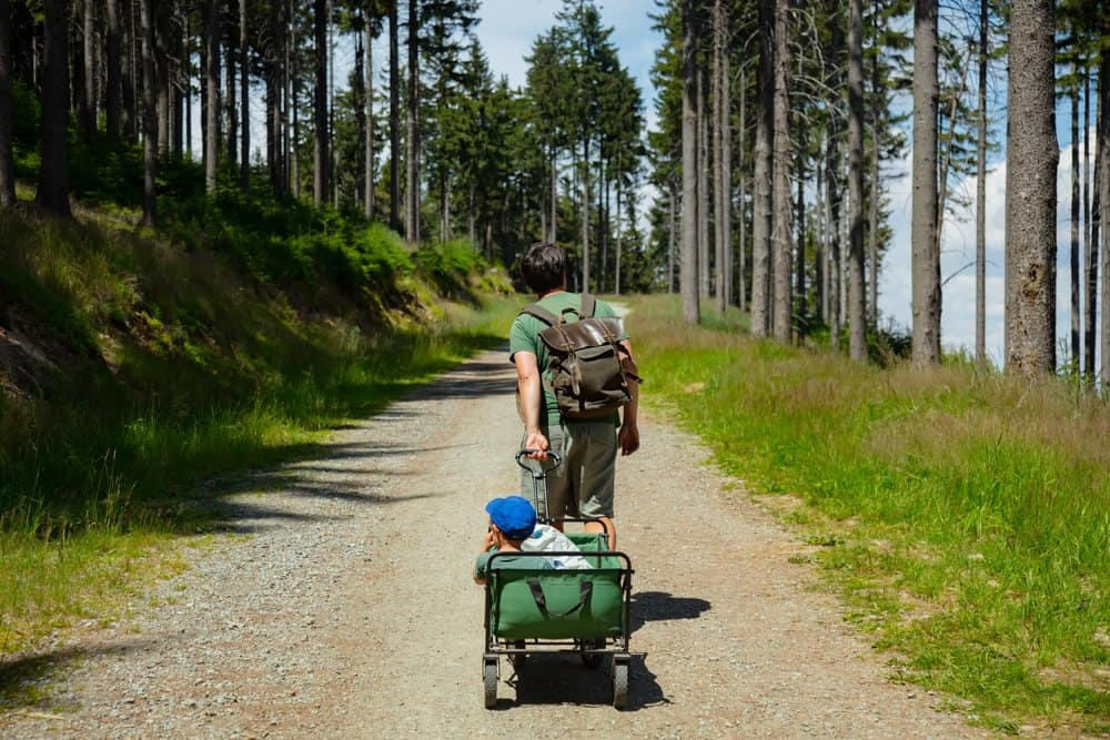 father pulling stroller wagon with child on a mountain trail