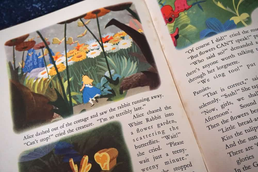 close up of book with words and illustrations