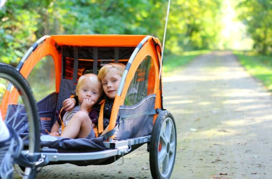 The 10 Best Bike Trailers for Kids 2020