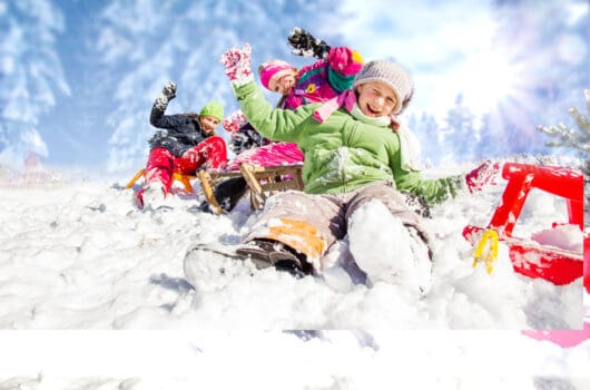 The 10 Best Snow Sleds for Kids to Buy in 2021